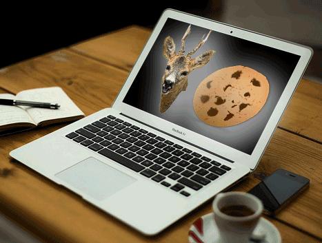 Política_cookies