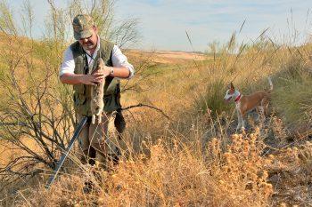 caza castilla la mancha